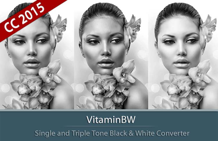 VitaminBW | Single and Triple Tone B&W Converter